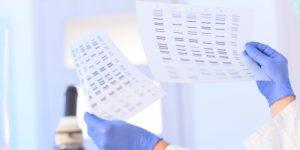 Czy wynik badania DNA może się mylić