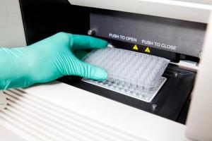 Testy DNA na ojcostwo