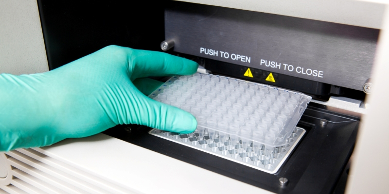 Czy można odmówić badań DNA przed Sądem