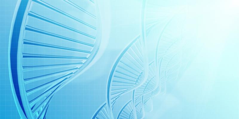 testDNA – pewne badania DNA w certyfikowanym laboratorium