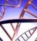 Badania genetyczne – badania ojcostwa i…?